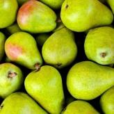 Organické hnojivo-jadrové ovocie, Rokohumin,50g