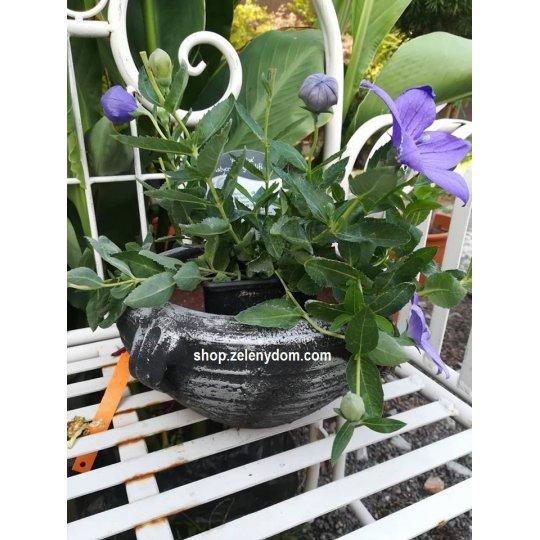 Kvetináč hlinený, priemer 20cm