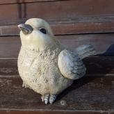 Vtáčik veľký, dekorácia