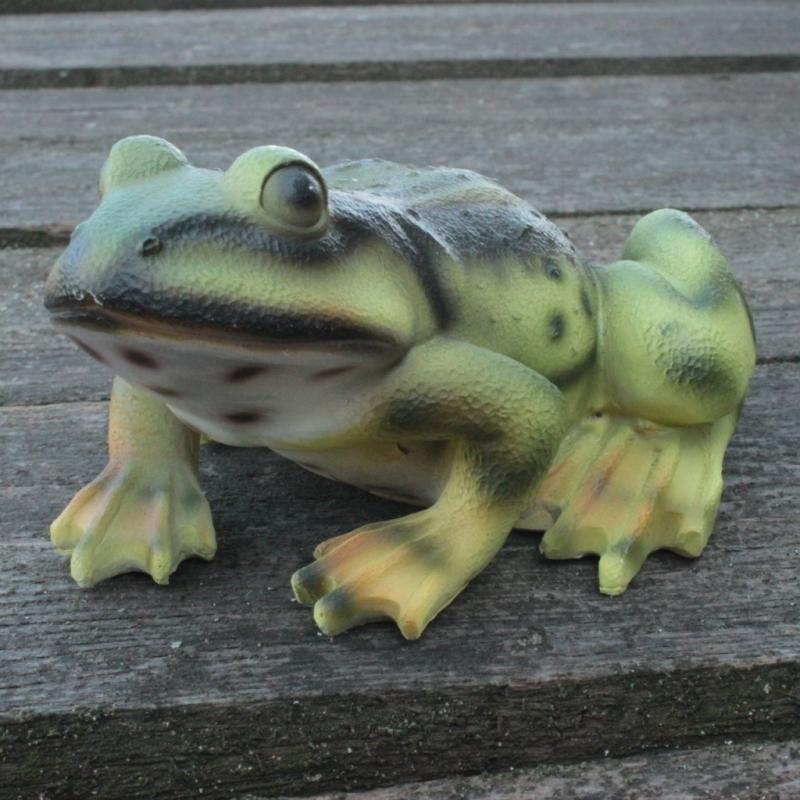 Žabka, dekorácia