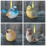 Vtáčik, mix farieb