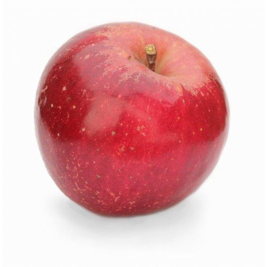Jabloň ´JONATHAN´, zimné