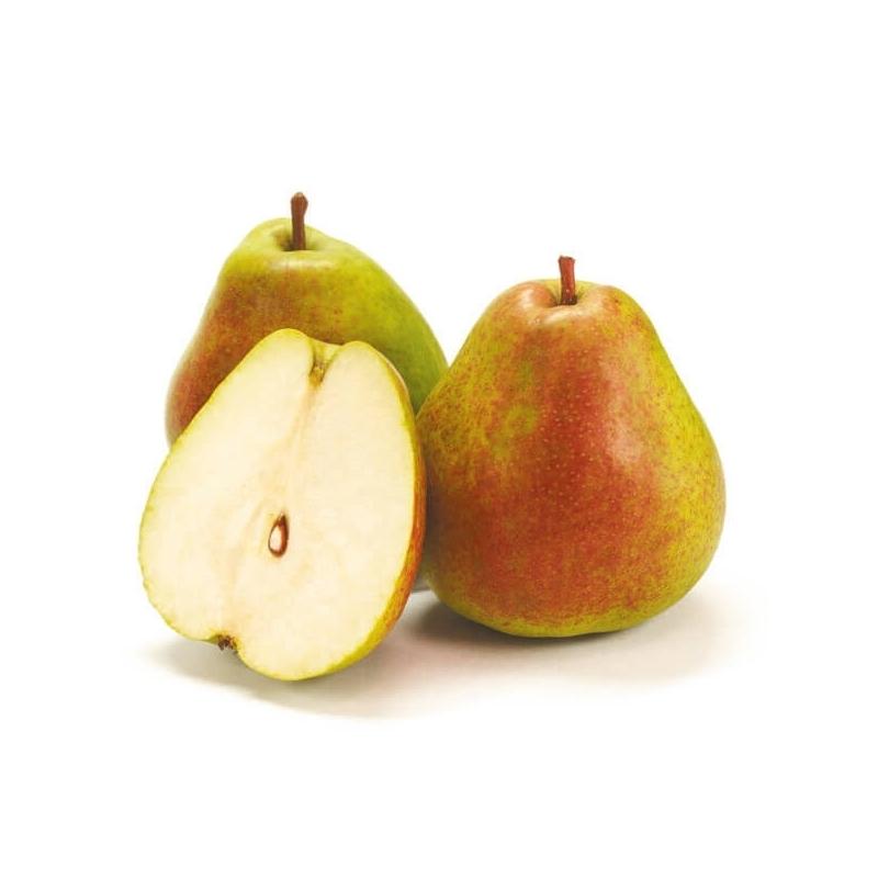 Hruška BEURRE HARDY, maslovka, voľný koreň
