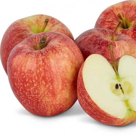 Jabloň GALA, jesenná, 130-160cm, podp. M9